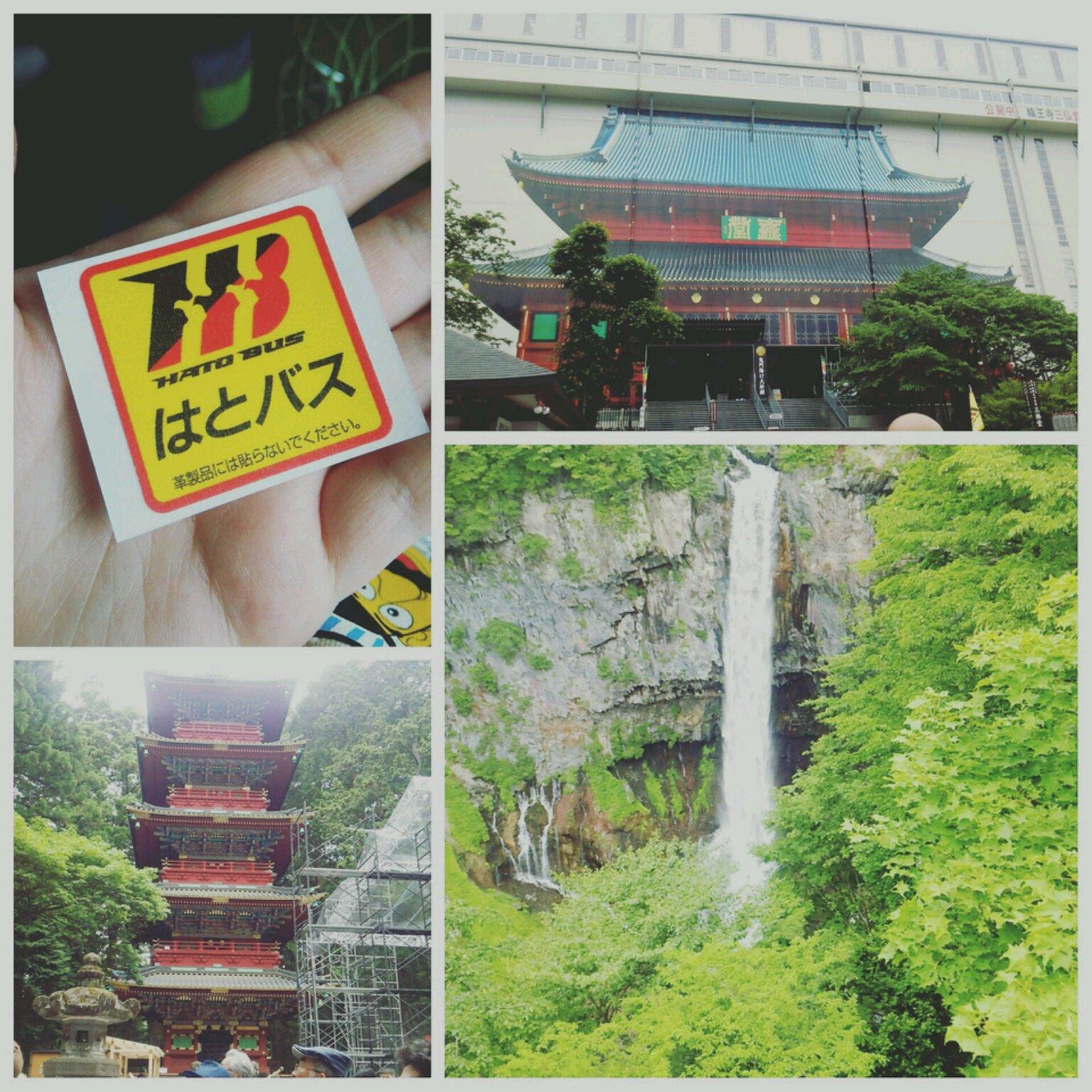 ディズニーランド!→→→!!